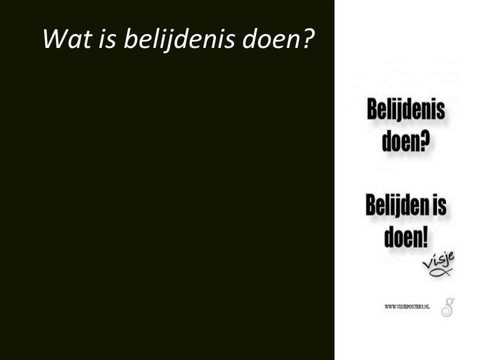 Wat is belijdenis doen?