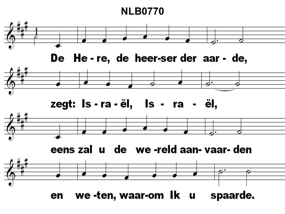 NLB0770