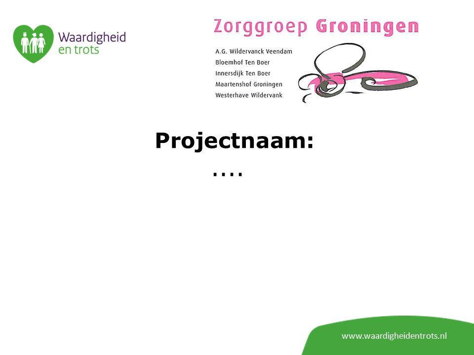 Projectnaam: www.waardigheidentrots.nl