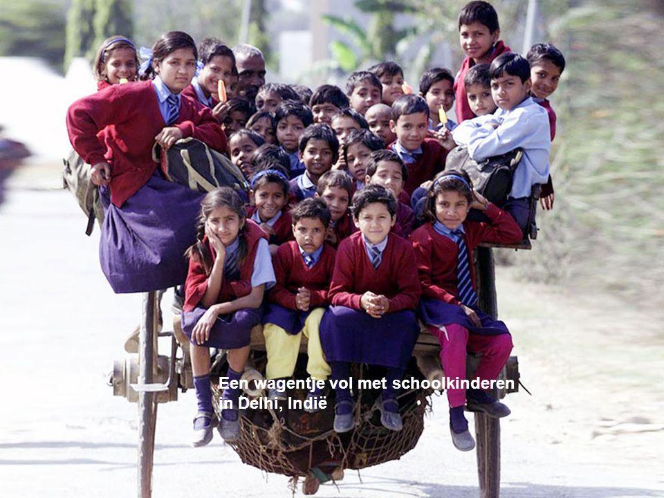 Een wagentje vol met schoolkinderen in Delhi, Indië