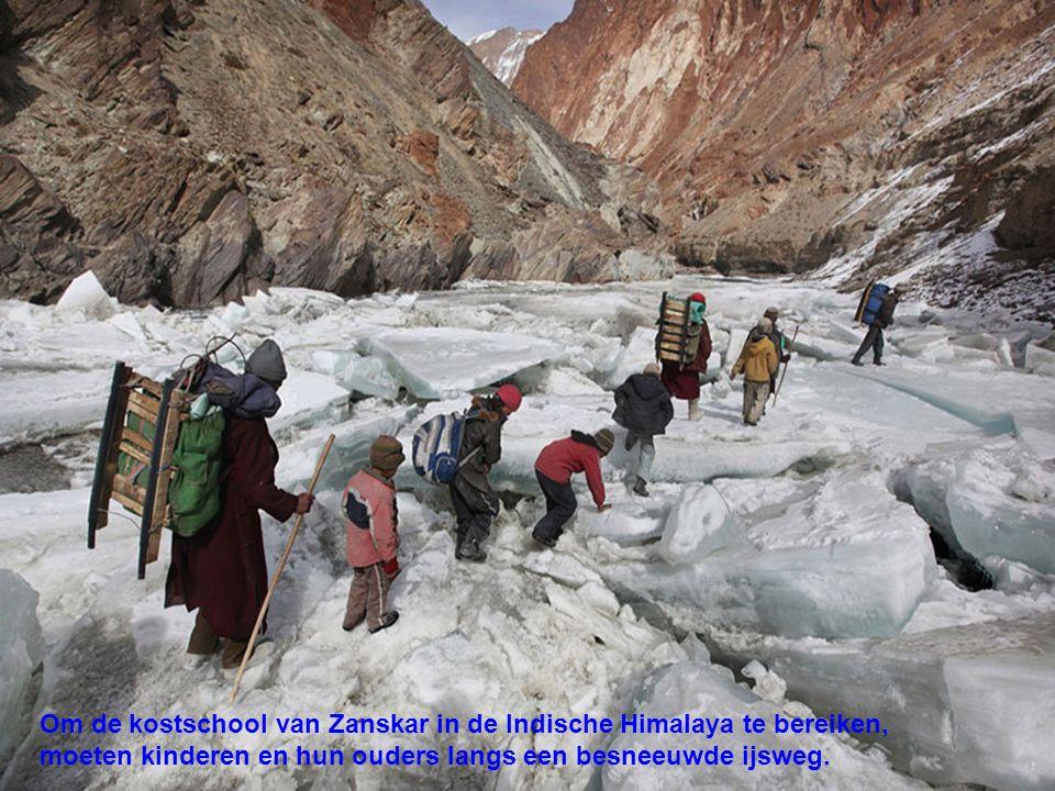 Om de kostschool van Zanskar in de Indische Himalaya te bereiken, moeten kinderen en hun ouders langs een besneeuwde ijsweg.