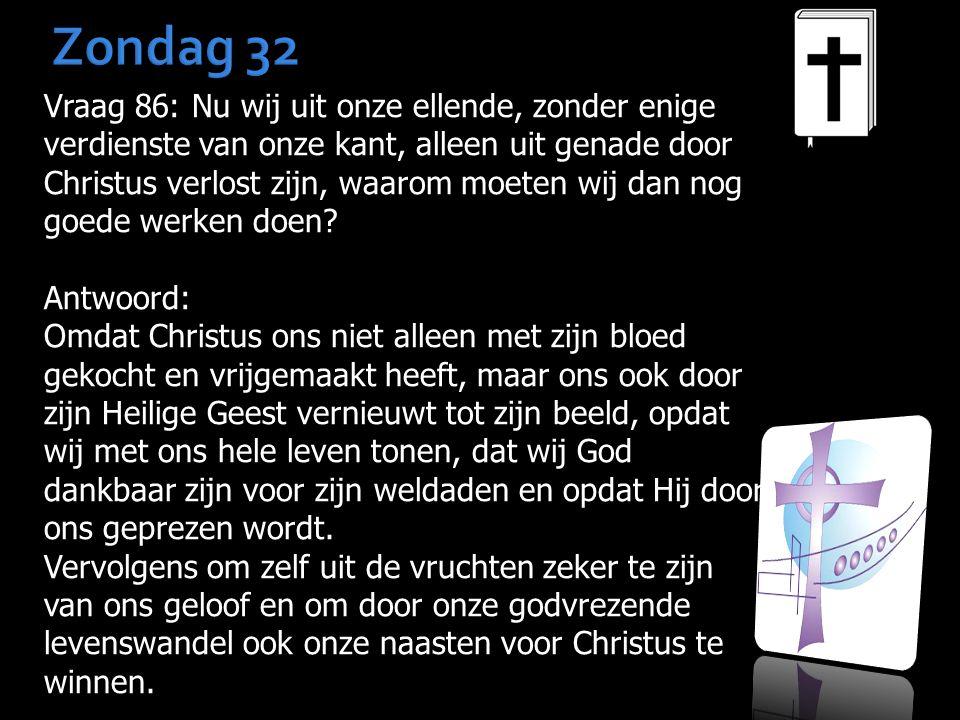 Zondag 32 Vraag 86: Nu wij uit onze ellende, zonder enige verdienste van onze kant, alleen uit genade door Christus verlost zijn, waarom moeten wij da