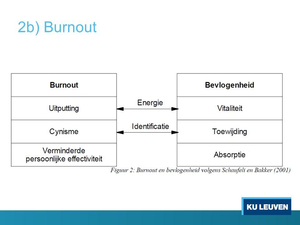 2b) Burnout