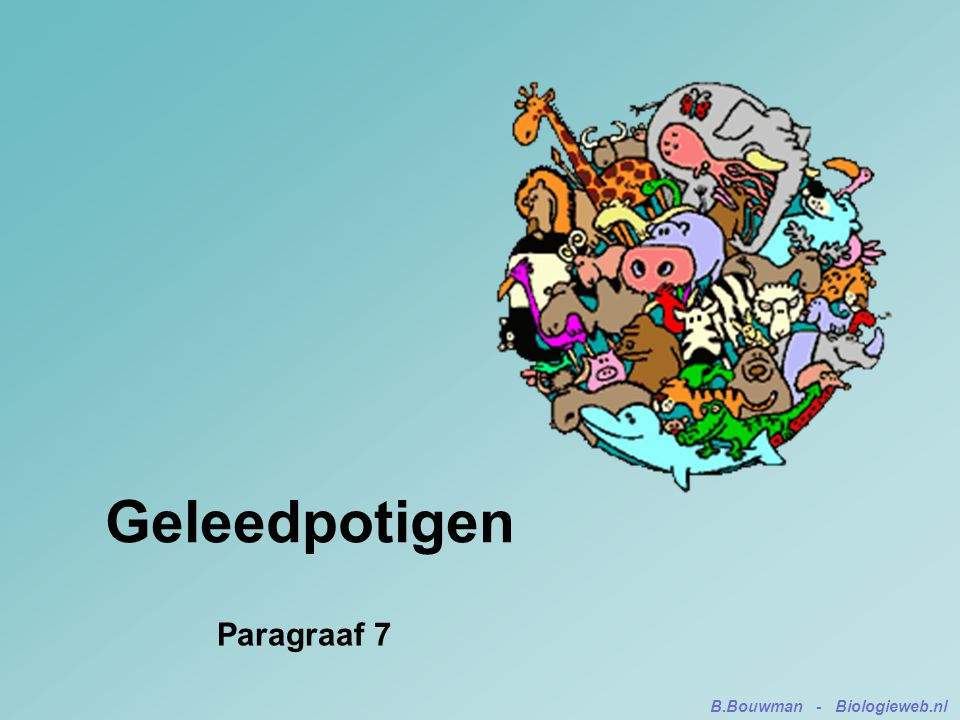 Geleedpotigen Paragraaf 7 B.Bouwman - Biologieweb.nl