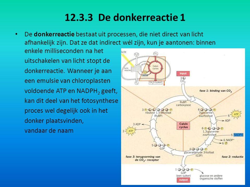 12.3.3 De donkerreactie 2 Tijdens de lichtreactie werd ATP gevormd en ook NADPH 2.
