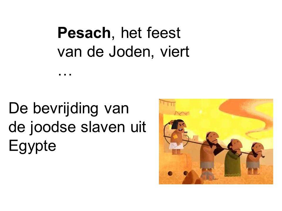 Pesach, het feest van de Joden, viert … De bevrijding van de joodse slaven uit Egypte