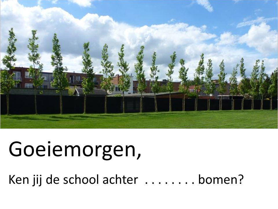 Goeiemorgen, Ken jij de school achter........ bomen?