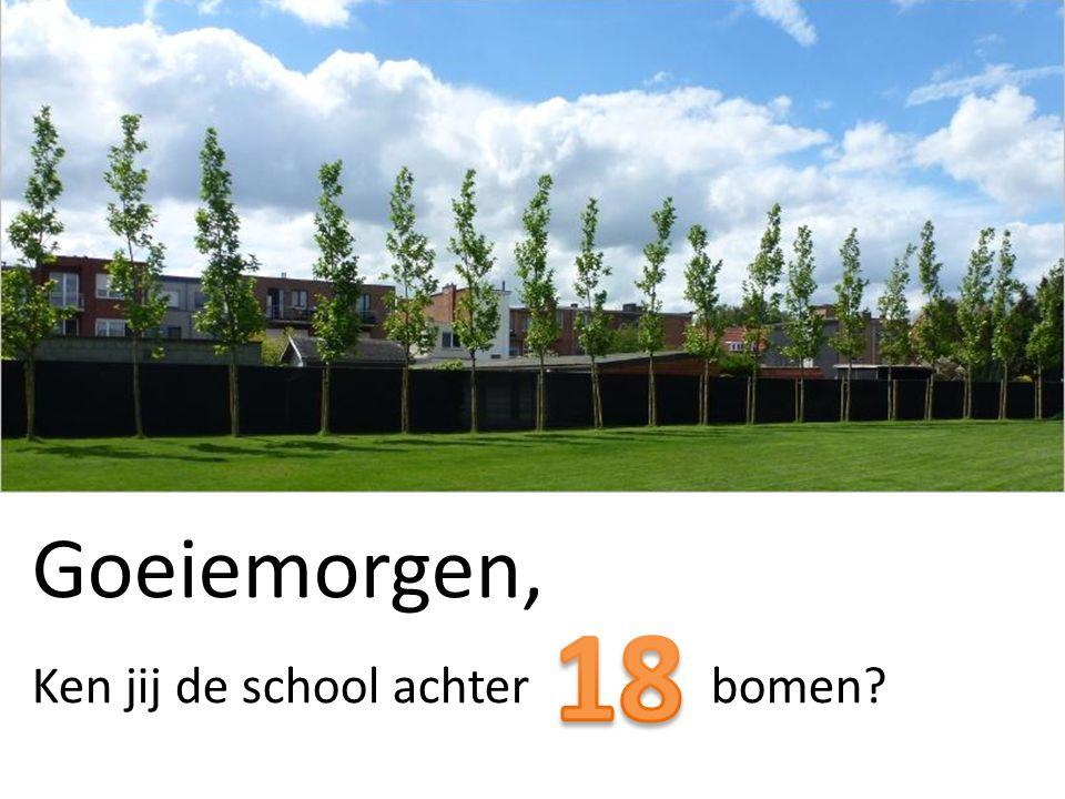 Goeiemorgen, Ken jij de school achter bomen?