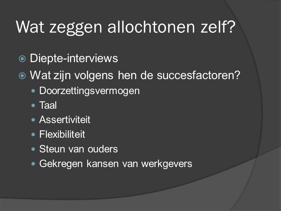 Wat zeggen allochtonen zelf.  Diepte-interviews  Wat zijn volgens hen de succesfactoren.