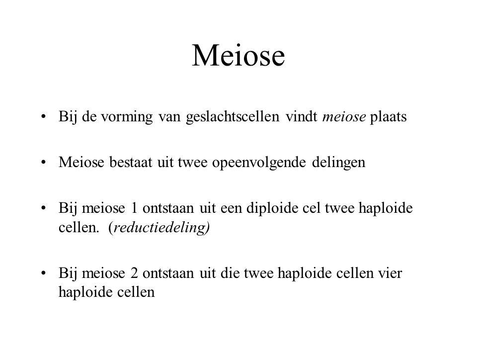 Bij de vorming van geslachtscellen vindt meiose plaats Meiose bestaat uit twee opeenvolgende delingen Bij meiose 1 ontstaan uit een diploide cel twee haploide cellen.