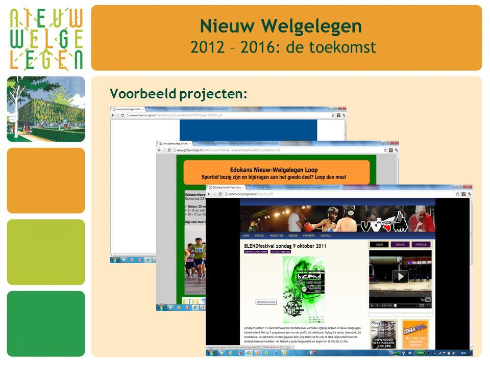 Voorbeeld projecten: Nieuw Welgelegen 2012 – 2016: de toekomst