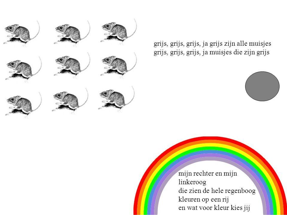 wit wit wit, ja wit zijn alle eitjes wit wit wit de eitjes die zijn wit mijn rechter en mijn linkeroog die zien de hele regenboog kleuren op een rij e
