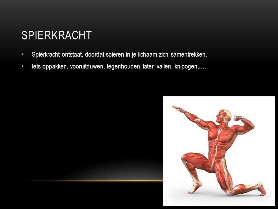 SPIERKRACHT Spierkracht ontstaat, doordat spieren in je lichaam zich samentrekken. Iets oppakken, vooruitduwen, tegenhouden, laten vallen, knipogen,….