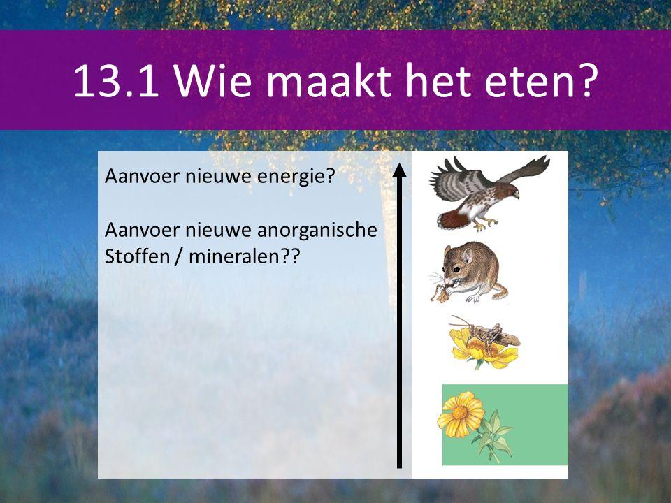 13.1 Wie maakt het eten? Aanvoer nieuwe energie? Aanvoer nieuwe anorganische Stoffen / mineralen??