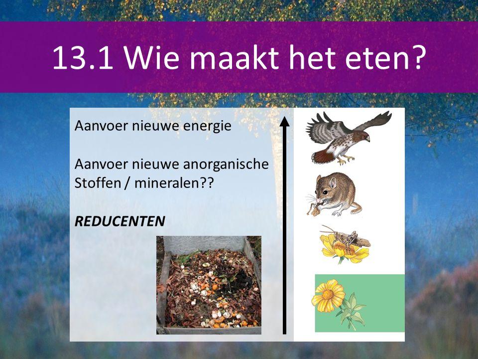 13.1 Wie maakt het eten.Aanvoer nieuwe energie Aanvoer nieuwe anorganische Stoffen / mineralen?.