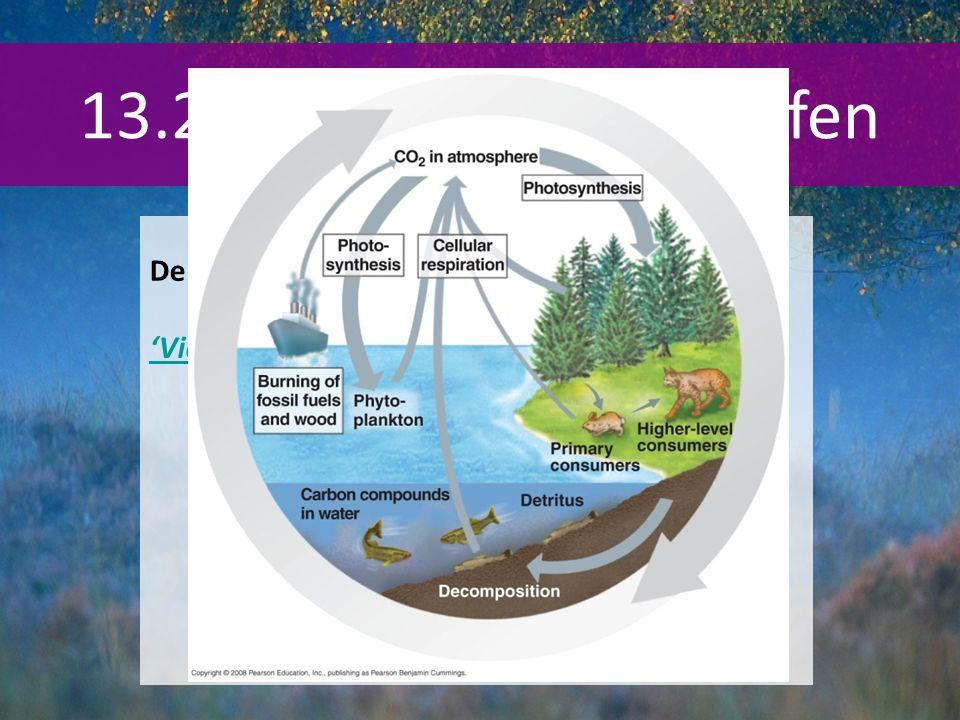 13.2 Doorgeven van stoffen De koolstofkringloop BINAS 93G (93B) 'Video'
