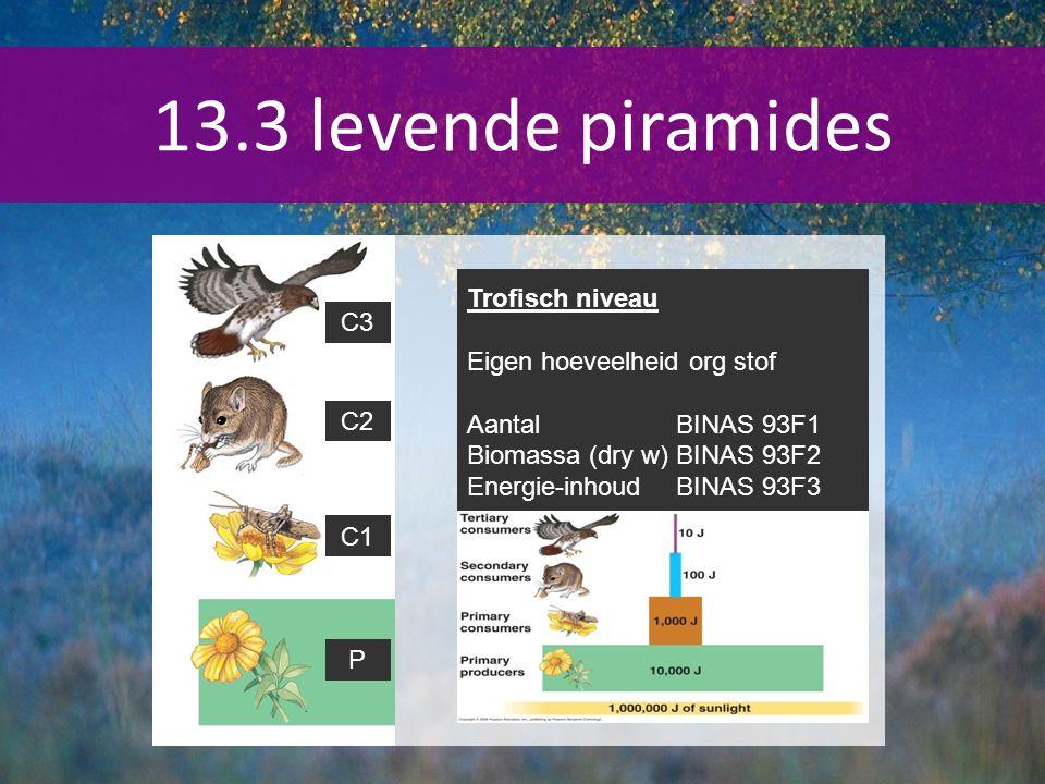 Trofisch niveau Eigen hoeveelheid org stof AantalBINAS 93F1 Biomassa (dry w)BINAS 93F2 Energie-inhoudBINAS 93F3 P C1 C2 C3