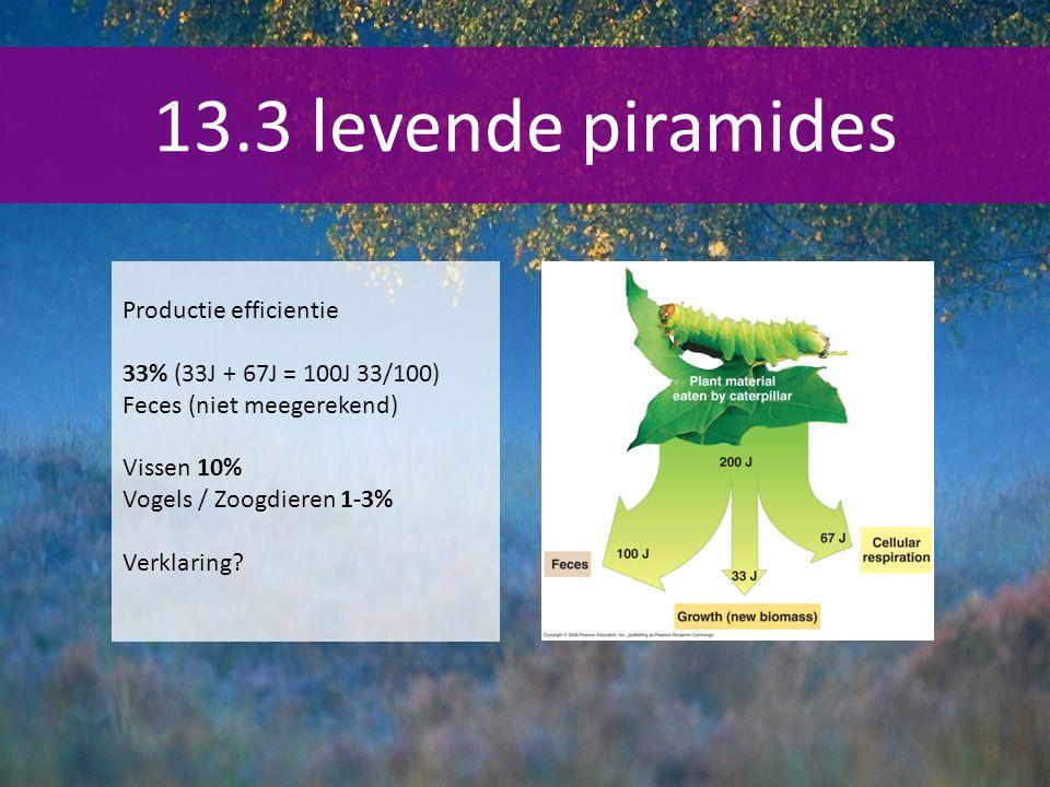 13.3 levende piramides Productie efficientie 33% (33J + 67J = 100J 33/100) Feces (niet meegerekend) Vissen 10% Vogels / Zoogdieren 1-3% Verklaring?