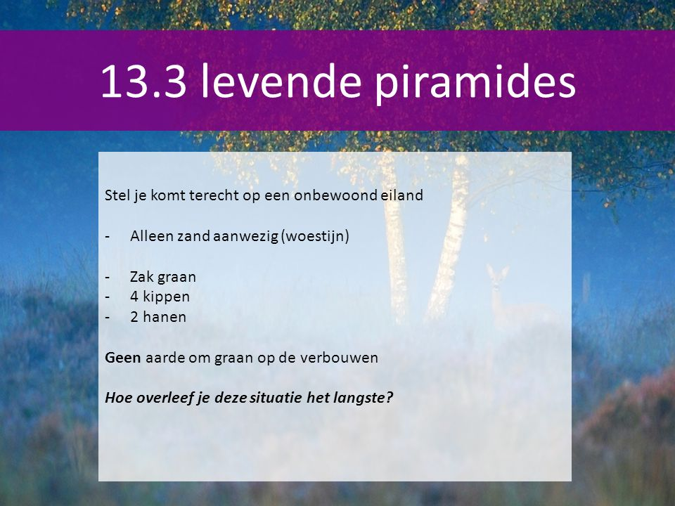 Stel je komt terecht op een onbewoond eiland -Alleen zand aanwezig (woestijn) -Zak graan -4 kippen -2 hanen Geen aarde om graan op de verbouwen Hoe overleef je deze situatie het langste?