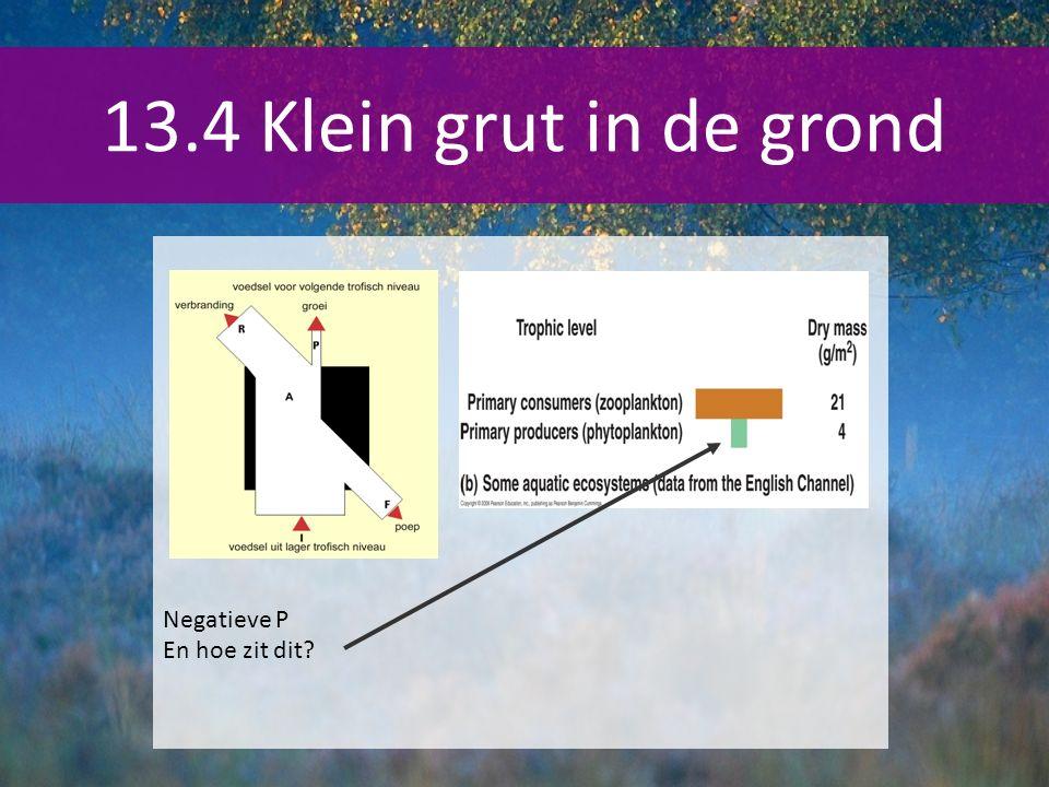 13.4 Klein grut in de grond Negatieve P En hoe zit dit?