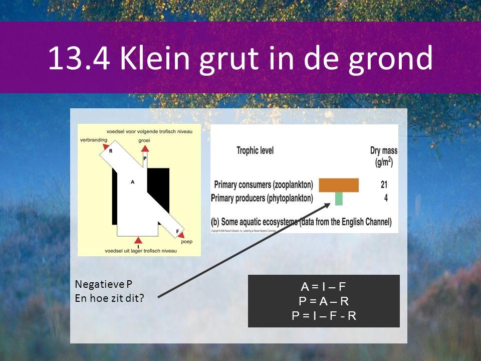 13.4 Klein grut in de grond Negatieve P En hoe zit dit? A = I – F P = A – R P = I – F - R