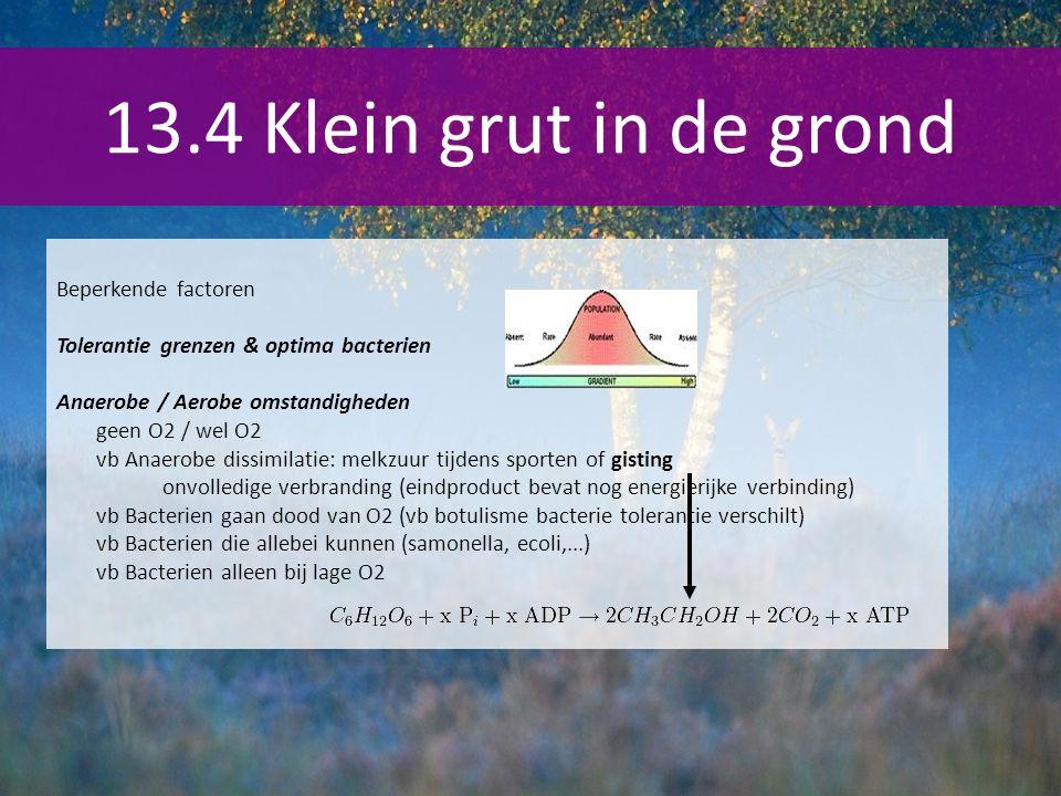 13.4 Klein grut in de grond Beperkende factoren Tolerantie grenzen & optima bacterien Anaerobe / Aerobe omstandigheden geen O2 / wel O2 vb Anaerobe di