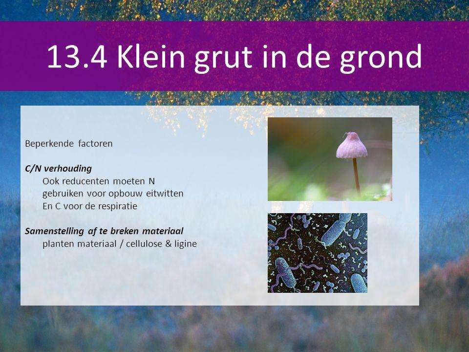 13.4 Klein grut in de grond Beperkende factoren C/N verhouding Ook reducenten moeten N gebruiken voor opbouw eitwitten En C voor de respiratie Samenst