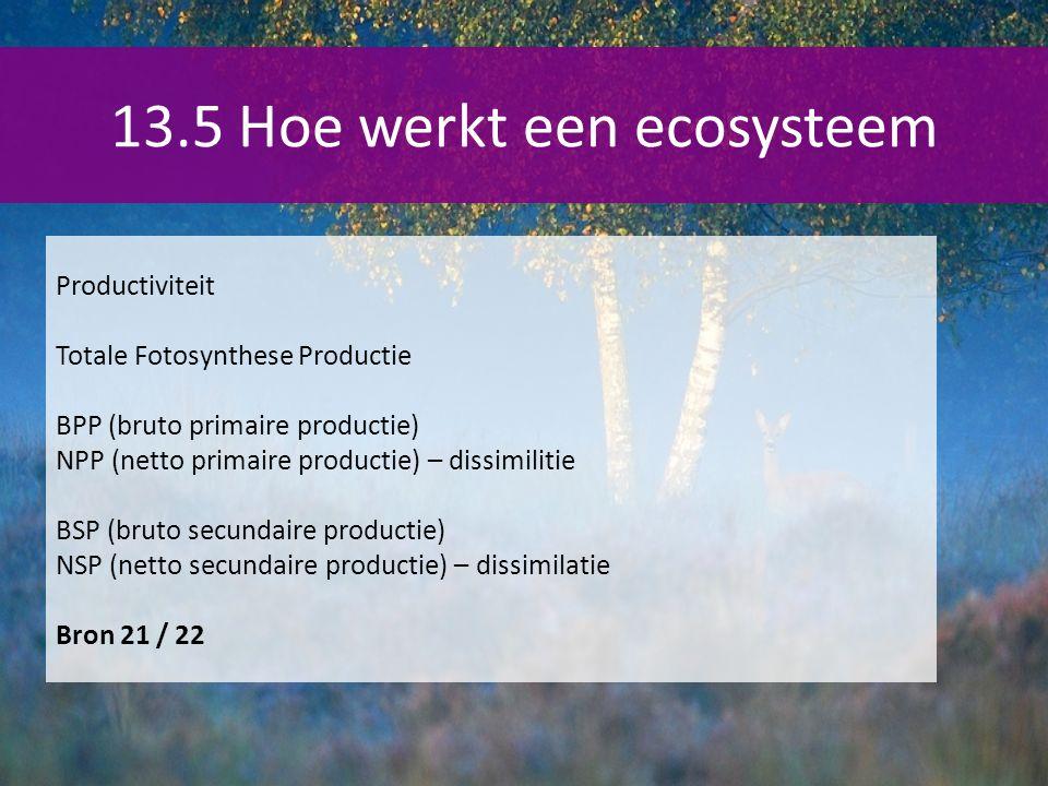 13.5 Hoe werkt een ecosysteem Productiviteit Totale Fotosynthese Productie BPP (bruto primaire productie) NPP (netto primaire productie) – dissimilitie BSP (bruto secundaire productie) NSP (netto secundaire productie) – dissimilatie Bron 21 / 22