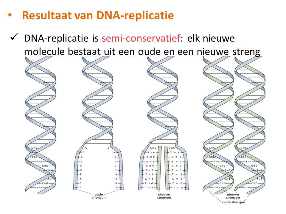DNA-replicatie is semi-conservatief: elk nieuwe molecule bestaat uit een oude en een nieuwe streng Resultaat van DNA-replicatie