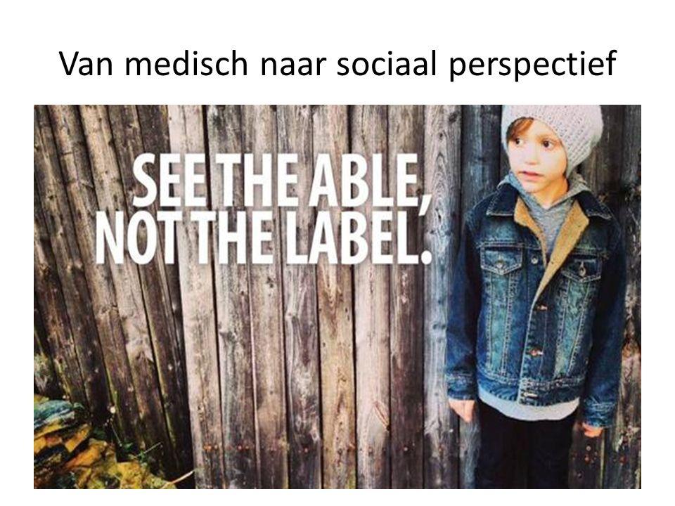 Van medisch naar sociaal perspectief