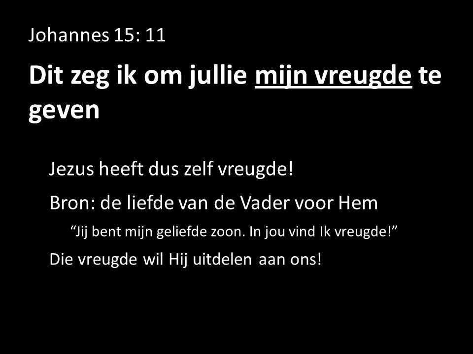 """Johannes 15: 11 Dit zeg ik om jullie mijn vreugde te geven Jezus heeft dus zelf vreugde! Bron: de liefde van de Vader voor Hem """"Jij bent mijn geliefde"""