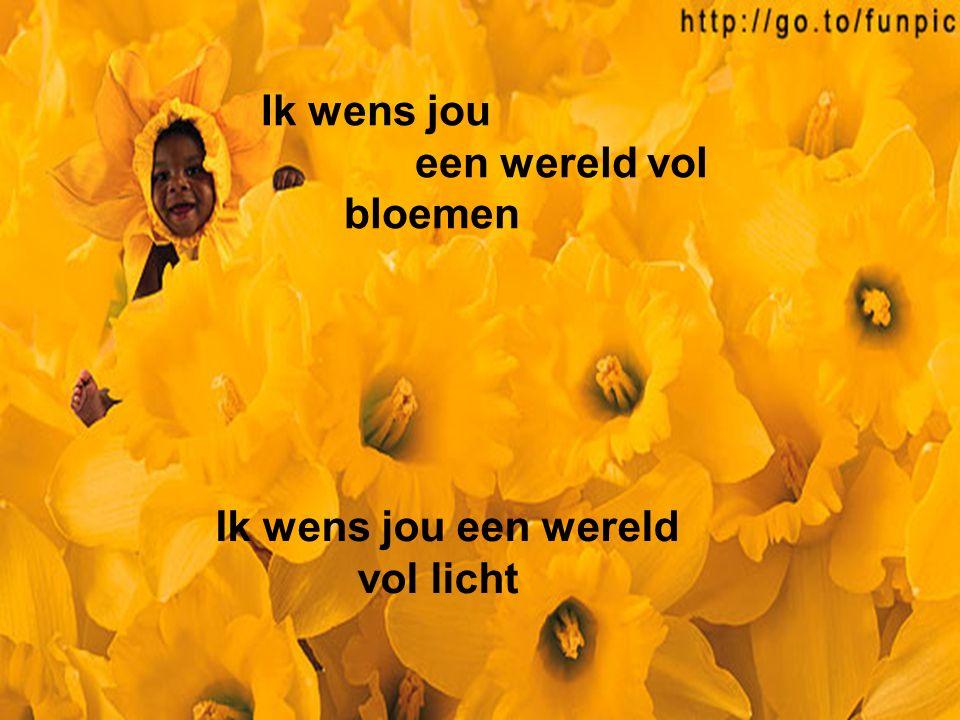 Ik wens jou een wereld vol bloemen Ik wens jou een wereld vol licht