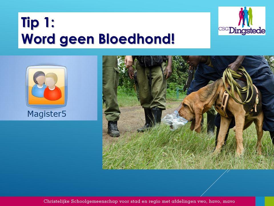 Tip 1: Word geen Bloedhond!