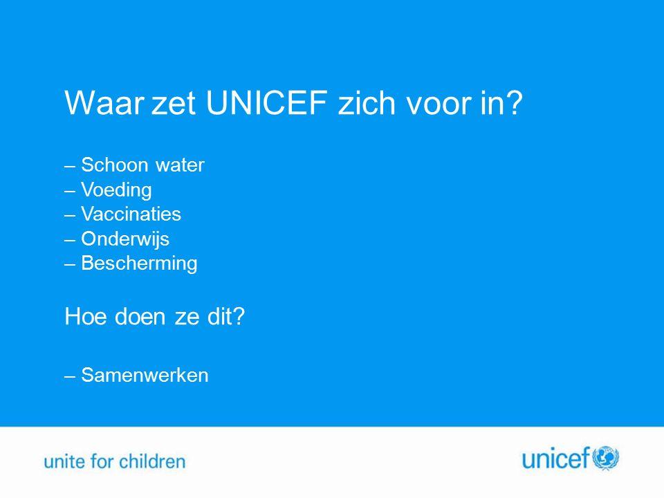 Waar zet UNICEF zich voor in.