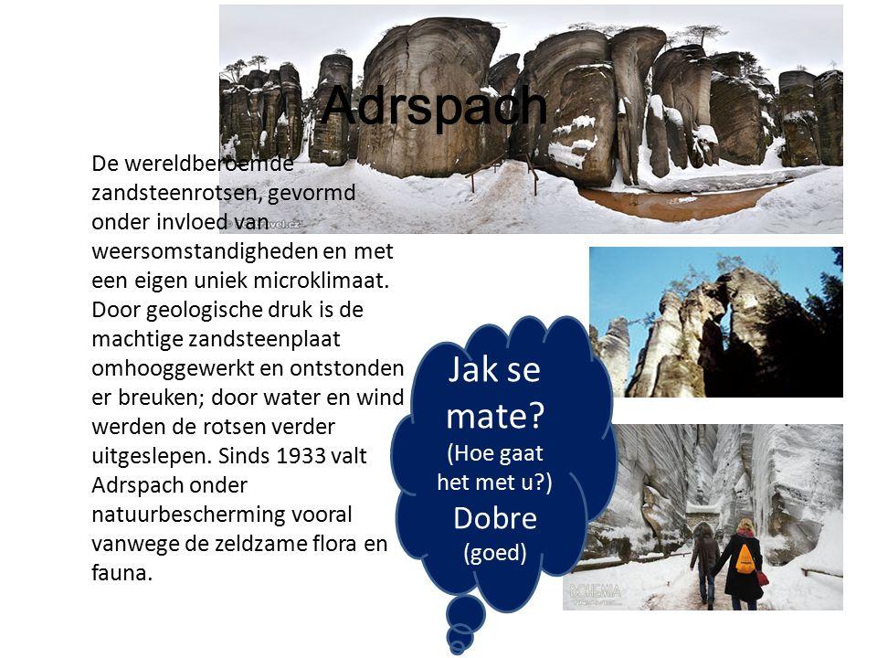 Adrspach De wereldberoemde zandsteenrotsen, gevormd onder invloed van weersomstandigheden en met een eigen uniek microklimaat.