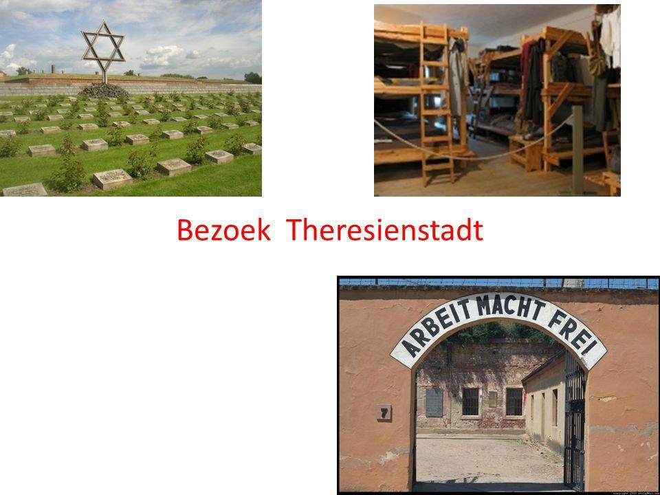 Bezoek grafietmijn Bezoek Theresienstadt