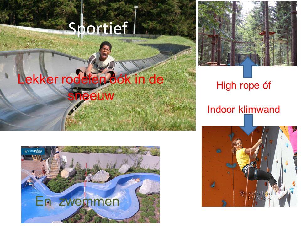 Sportief Sport Lekker rodelen óók in de sneeuw En zwemmen High rope óf Indoor klimwand