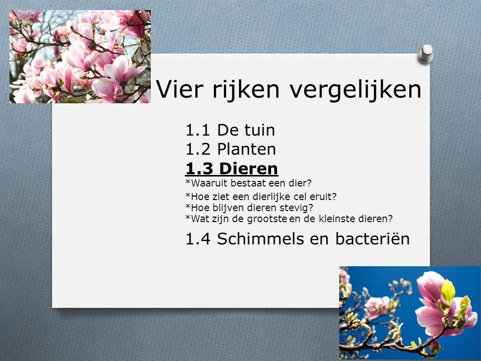 Vier rijken vergelijken 1.1 De tuin 1.2 Planten 1.3 Dieren *Waaruit bestaat een dier.