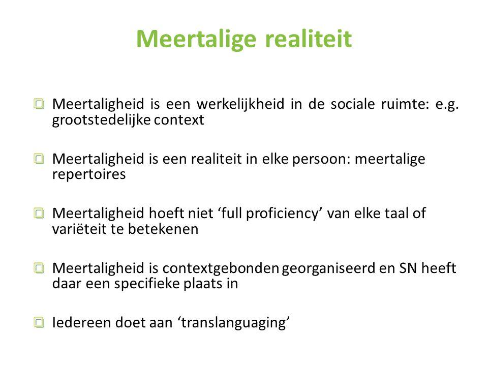 Meertaligheid is een werkelijkheid in de sociale ruimte: e.g.