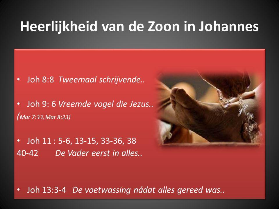 Heerlijkheid van de Zoon in Johannes Joh 8:8 Tweemaal schrijvende.. Joh 9: 6 Vreemde vogel die Jezus.. ( Mar 7:33, Mar 8:23) Joh 11 : 5-6, 13-15, 33-3