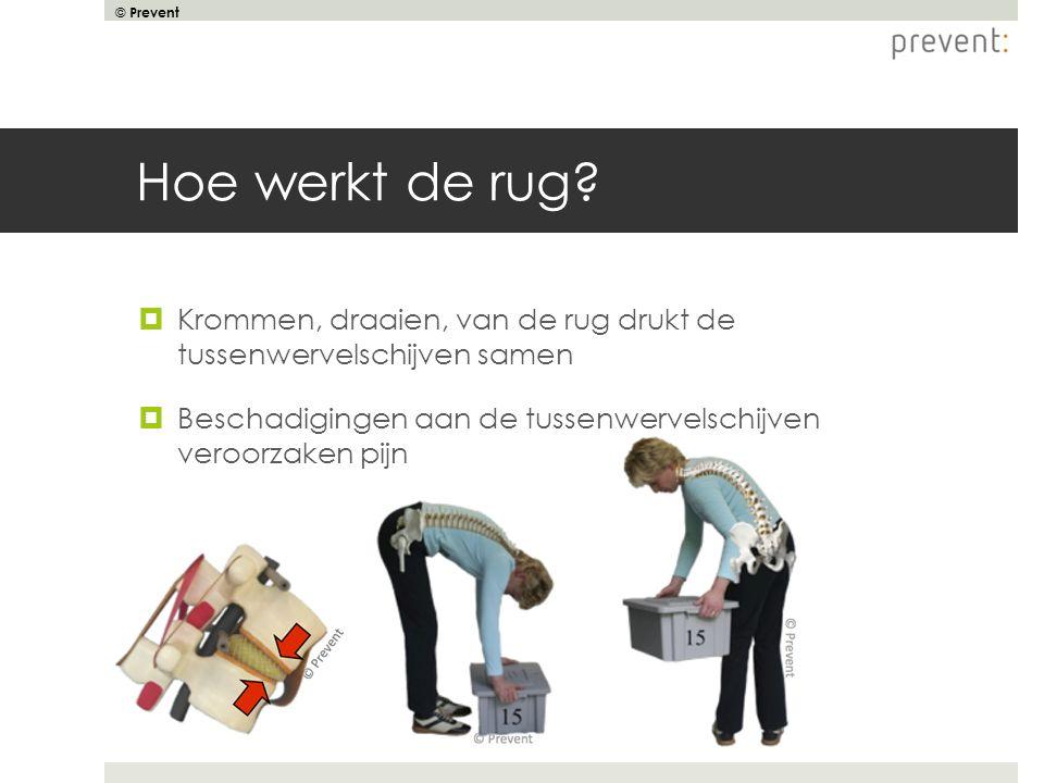 © Prevent Hoe werkt de rug?  Krommen, draaien, van de rug drukt de tussenwervelschijven samen  Beschadigingen aan de tussenwervelschijven veroorzake