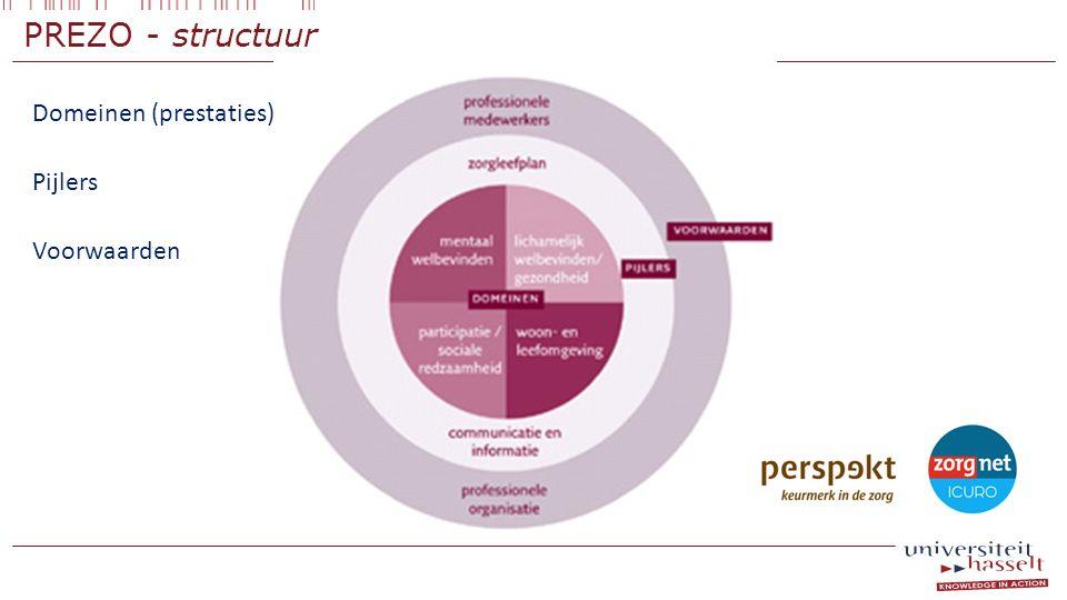 PREZO - structuur Domeinen (prestaties) Pijlers Voorwaarden