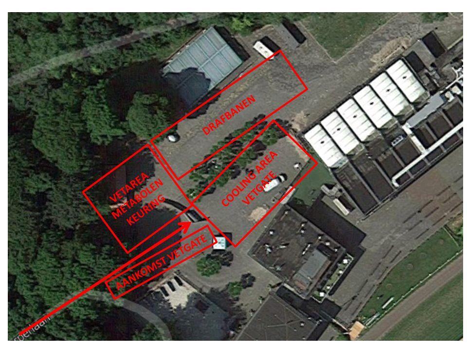 10) Parkeren groomauto's 11) Hoofdingang Duindigt door poort 12) Rechtdoor linker pad naar vetgate 13) Cooling Area recht 14) Vetgate in links 13 14