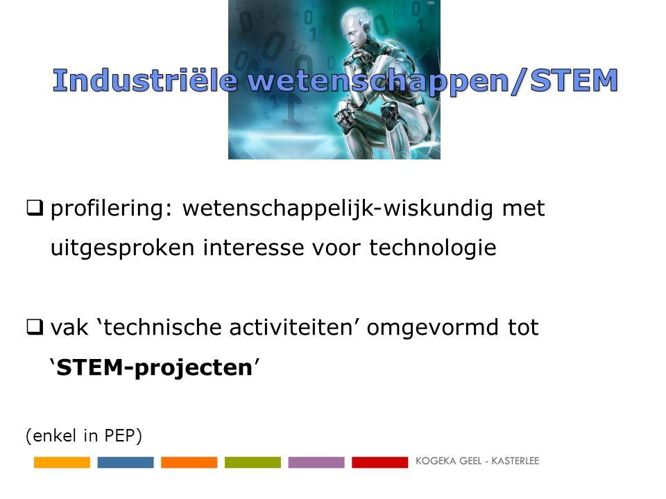 profilering: wetenschappelijk-wiskundig met uitgesproken interesse voor technologie  vak 'technische activiteiten' omgevormd tot 'STEM-projecten' (