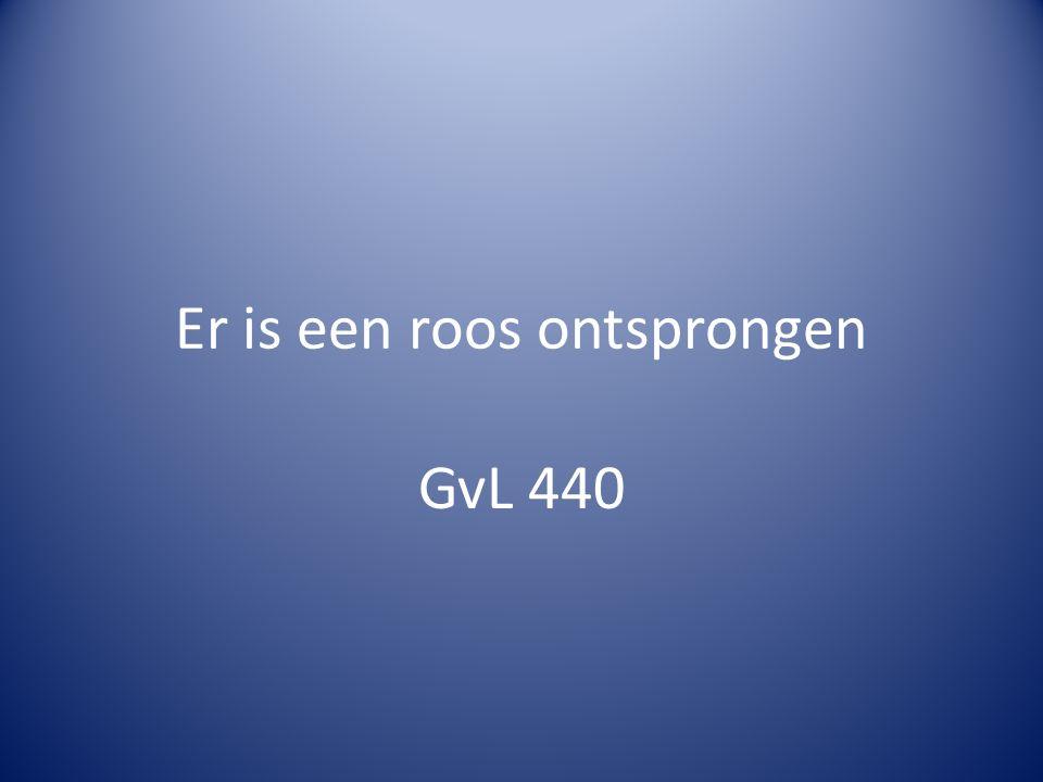 Er is een roos ontsprongen GvL 440