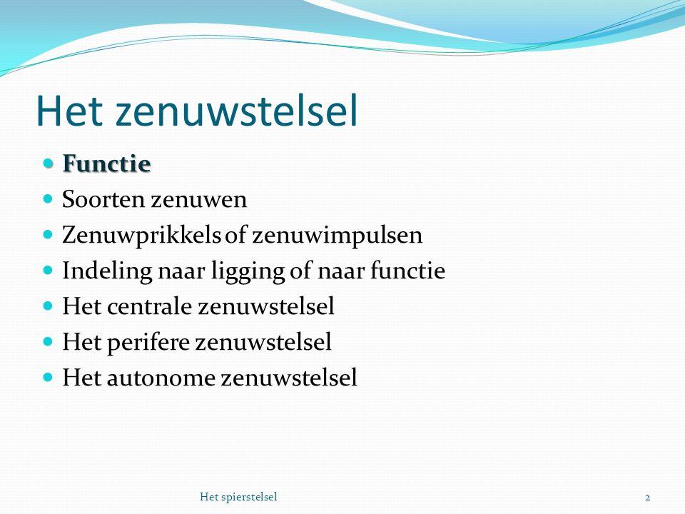 Het zenuwstelsel Functie Functie Soorten zenuwen Zenuwprikkels of zenuwimpulsen Indeling naar ligging of naar functie Het centrale zenuwstelsel Het pe