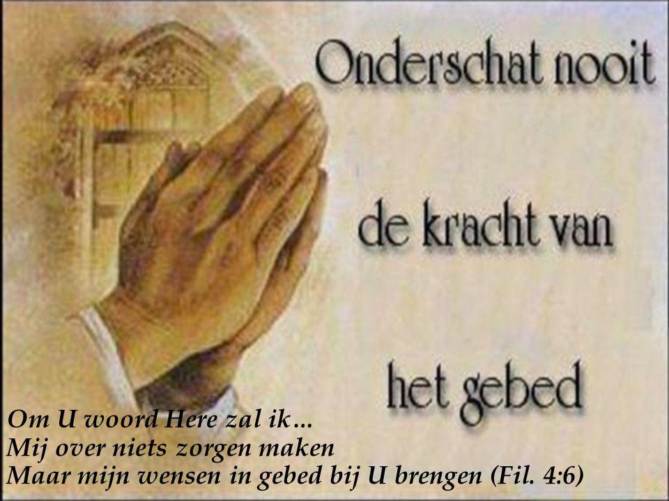Om U woord Here zal ik… Mij over niets zorgen maken Maar mijn wensen in gebed bij U brengen (Fil.