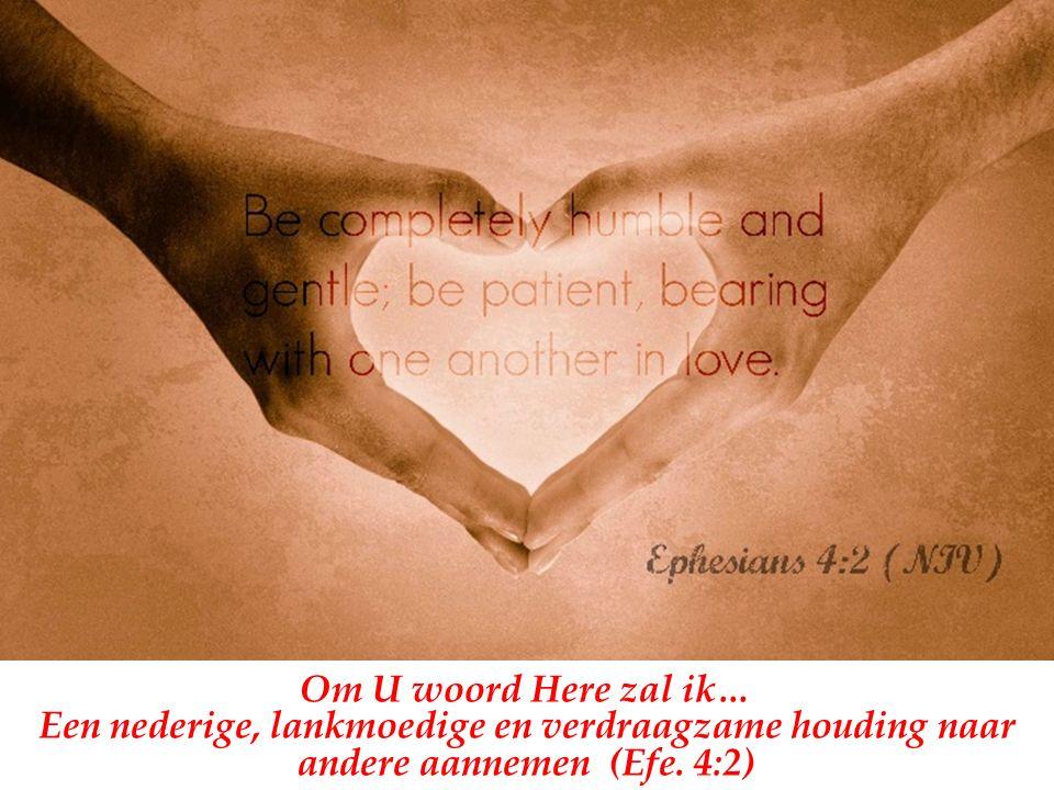 Om U woord Here zal ik… Een nederige, lankmoedige en verdraagzame houding naar andere aannemen (Efe.
