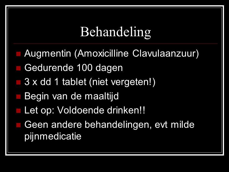 Behandeling Augmentin (Amoxicilline Clavulaanzuur) Gedurende 100 dagen 3 x dd 1 tablet (niet vergeten!) Begin van de maaltijd Let op: Voldoende drinke