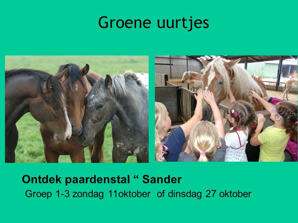 """Groene uurtjes Ontdek paardenstal """" Sander Groep 1-3 zondag 11oktober of dinsdag 27 oktober"""